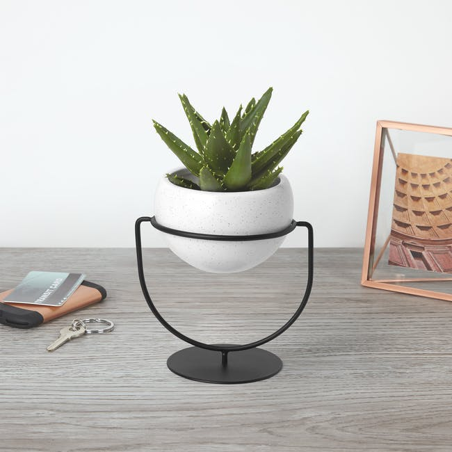 Nesta Wall & Desk Planter - 10