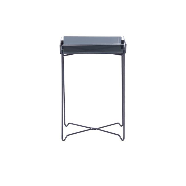 Campbell Occasional Table - Black Acrylic, Iridium - 1