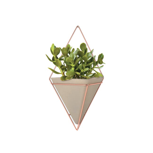 Trigg Large Wall Vessel - Copper - 0