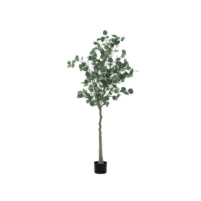 Potted Faux Eucalyptus Tree 160 cm - 0