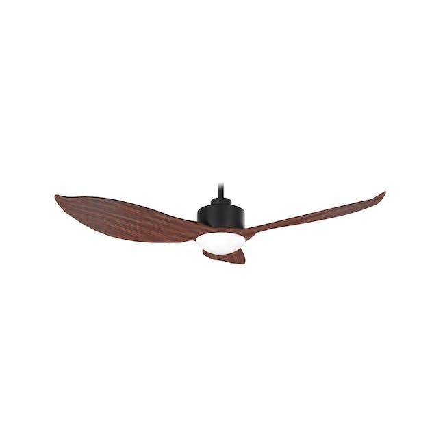 F3FC Black Dark Oak Decor Fan (2 Sizes) - 0