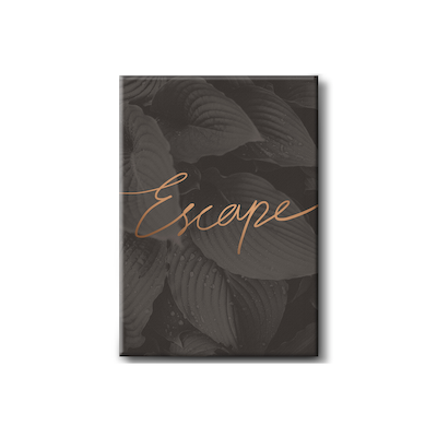 Escape Stretched Canvas Art Print - Image 1