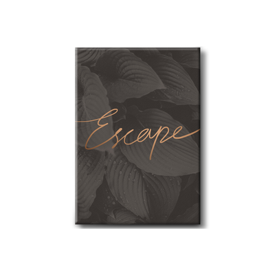 Escape Stretched Canvas Art Print