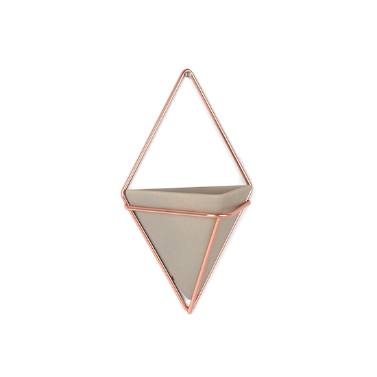 Umbra - Trigg Small Wall Vessel (Set of 2) - Copper