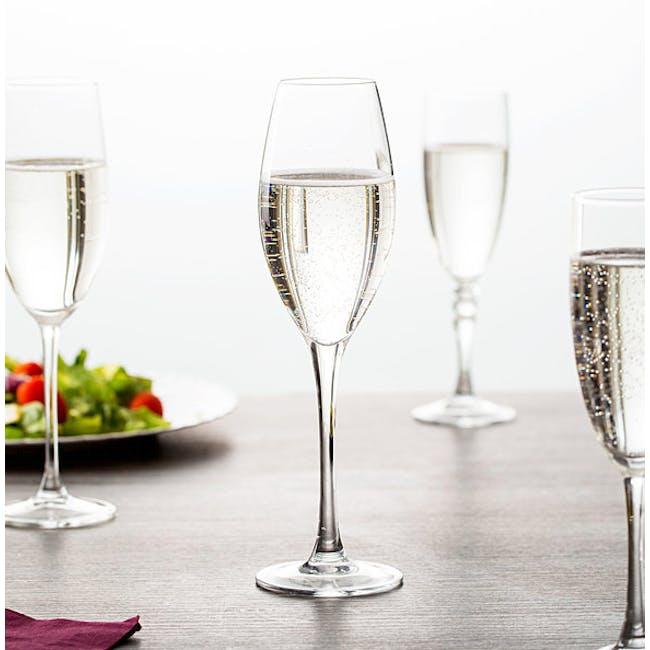 Chef & Sommelier Grands Cépages Champagne Flute 24cl - Set of 6 - 2
