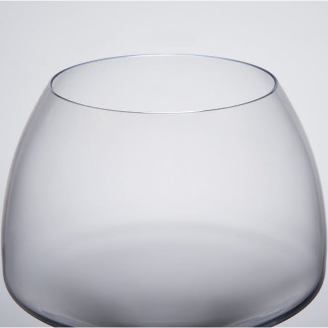 Chef & Sommelier Open Up Tannic Wine Glass 55cl - Set of 6 - 2