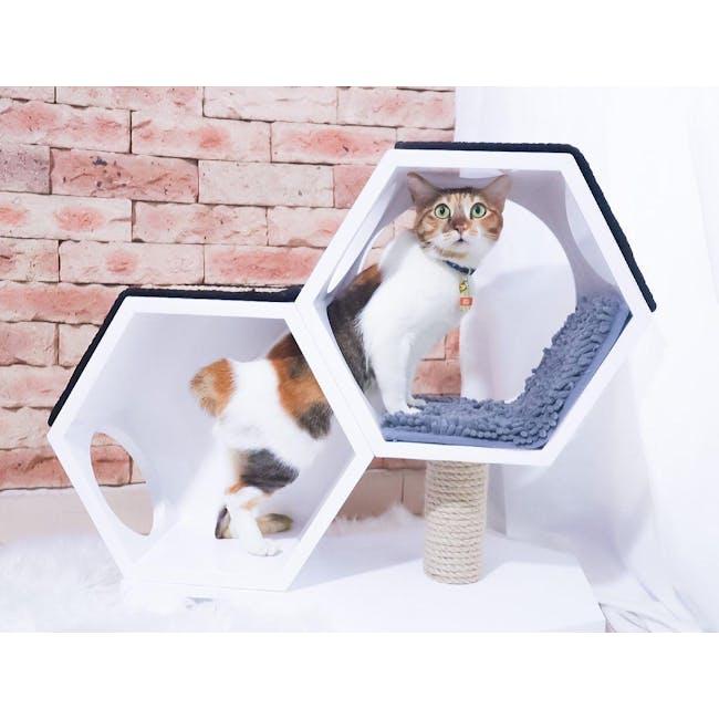 Pet Series - Purrfect Pair - 5