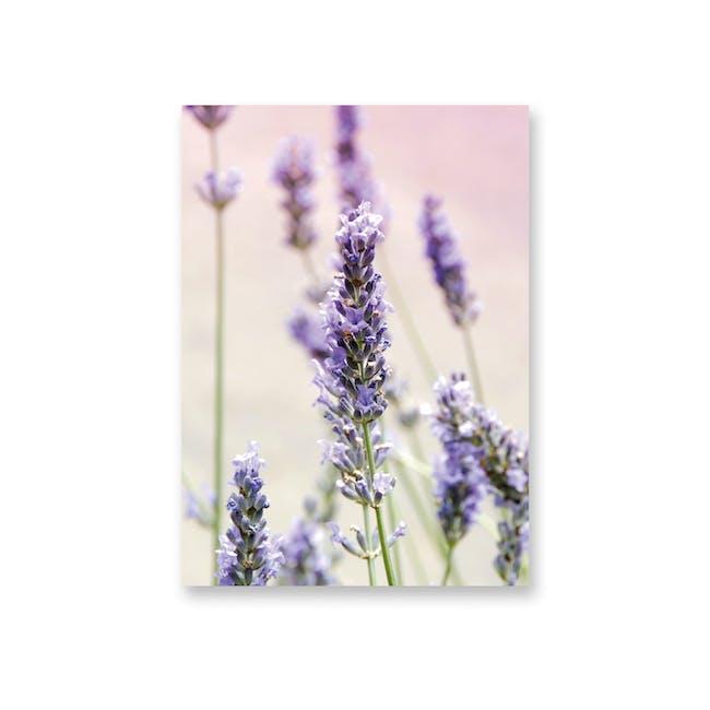 Borderless Florae Art Print on Paper (2 Sizes) - Lavender - 0