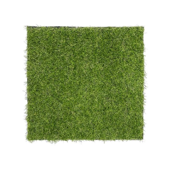 Patio Grass Carpet - 0