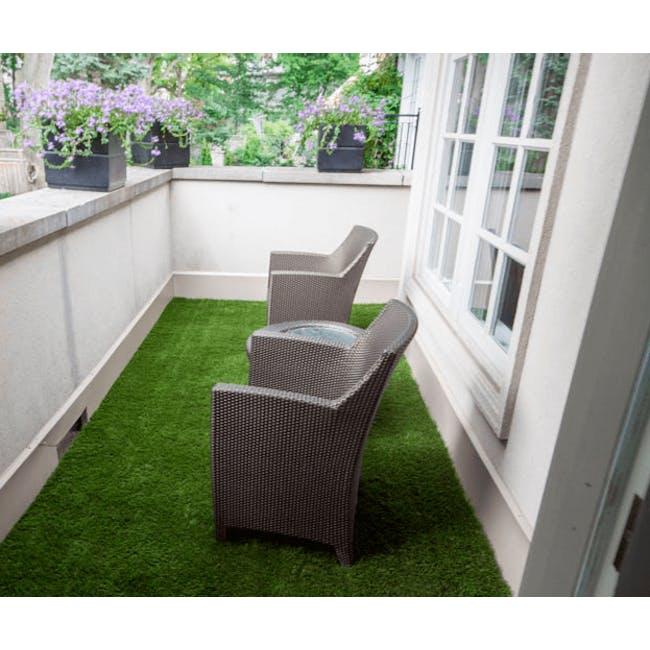 Patio Grass Carpet - 2