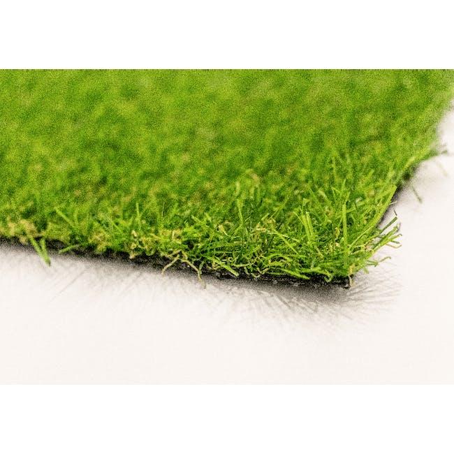 Patio Grass Carpet - 1