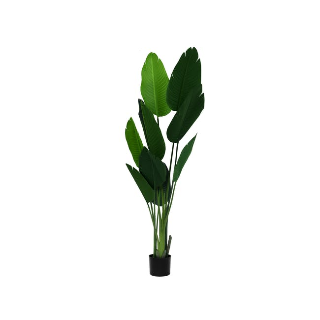 Potted Faux Traveller's Palm Tree 150 cm - 0