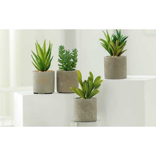 Faux Sedum in Concrete Planter - 1