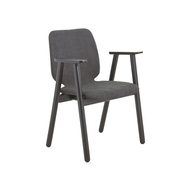 Missie Dining Armchair - Black, Dark Grey - 0