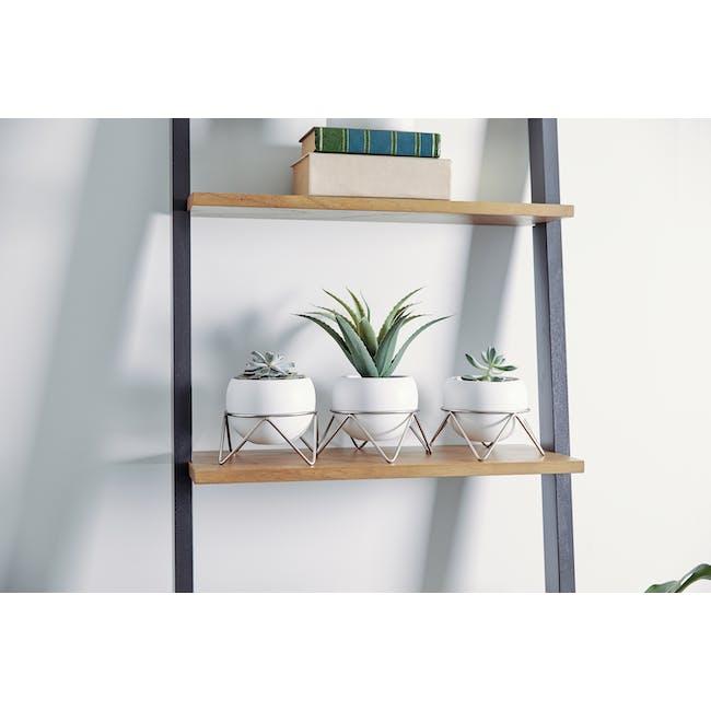 Potsy Desk Planter (Set of 3) - White - 1