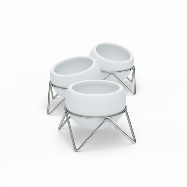 Potsy Desk Planter (Set of 3) - White - 2