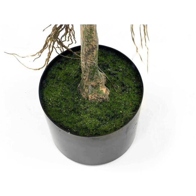 Potted Faux Bayan Tree 160 cm - 6
