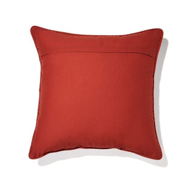 Redite Cushion - 1