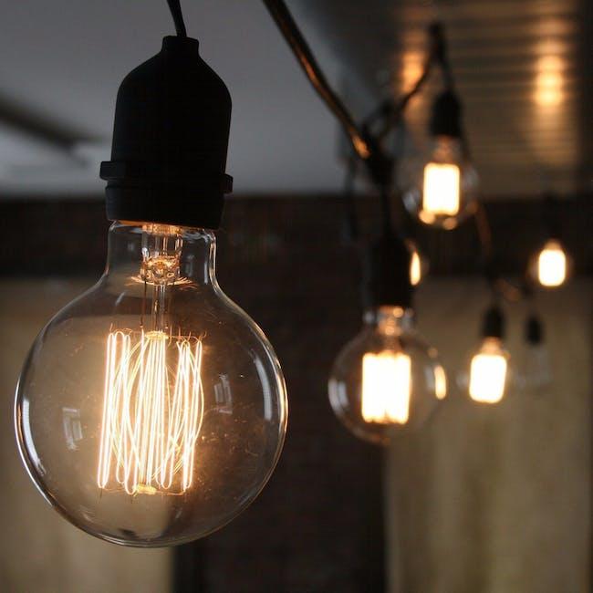 Edison G125 Squirrel Cage Filament Bulb - 4