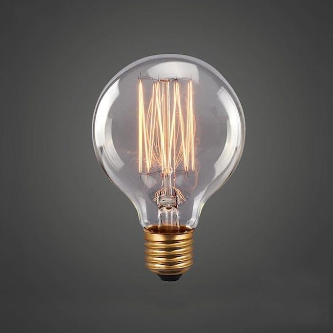 Edison G125 Squirrel Cage Filament Bulb - 1