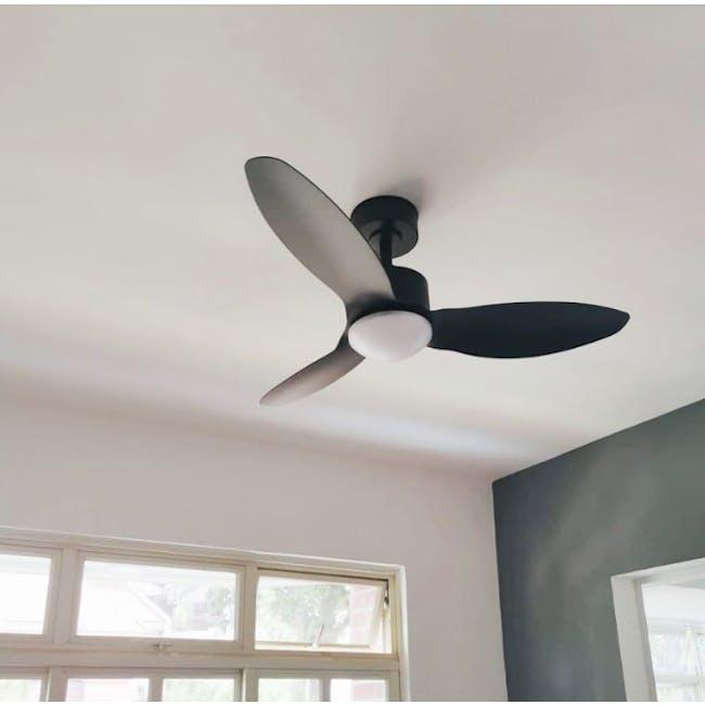 F6FC Black Decor Fan - 42 inches - 1