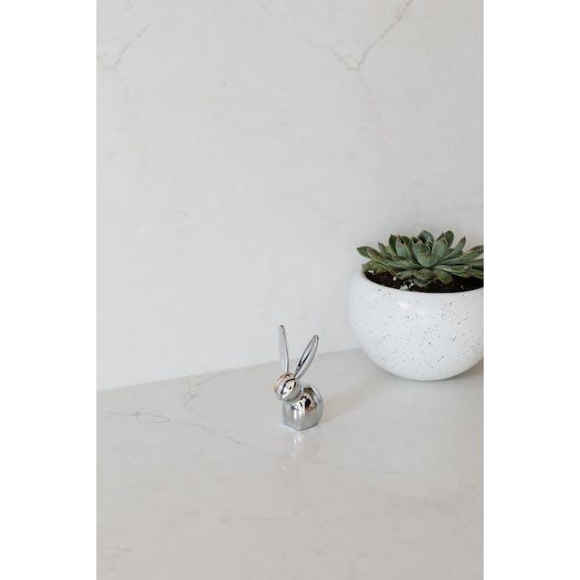 Zoola Bunny Ring Holder - Chrome - 5