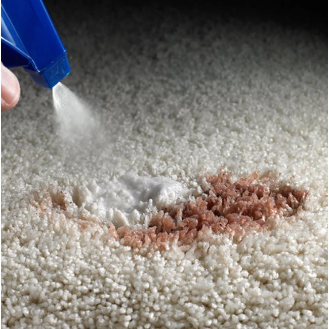 ScotchGard Oxy Spot & Stain Remover for Carpet - 1