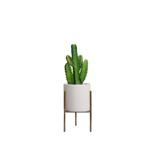 Faux Cactus with Planter on Stand 26 cm - White, Brass legs - 0