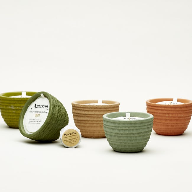 Pass It On Plantable Candles - Congo Basin - 3