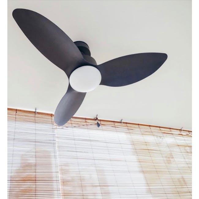 F1FC Black Decor Fan (3 Sizes) - 4