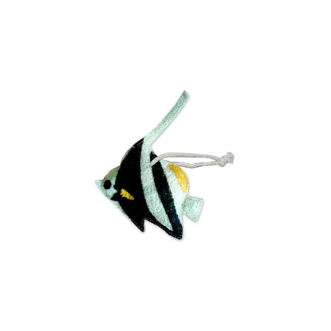 Angelfish Loofah - 0