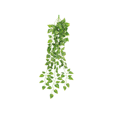 Faux Hanging Boston Ivy Botanicals By Hipvan Hipvan