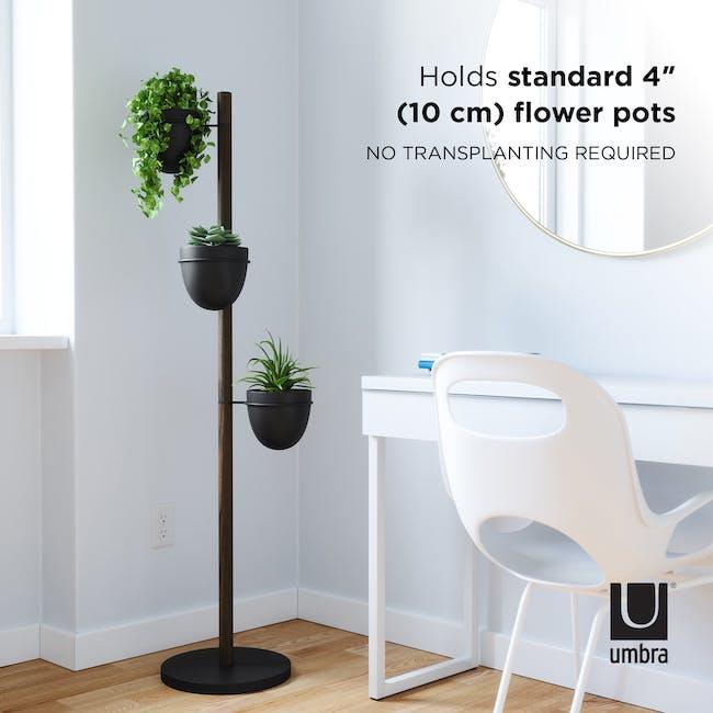 Floristand Planter - Walnut, Black - 7