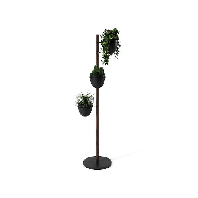 Floristand Planter - Walnut, Black - 3