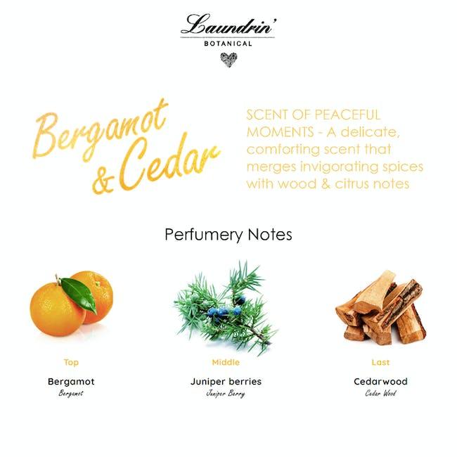 Laundrin Botanical Fabric Refresher 300ml - Bergamot & Cedar (99.9% Anti-bacterial) - 3