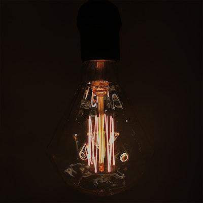 Edison Z110 Squirrel Diamond Filament Bulb