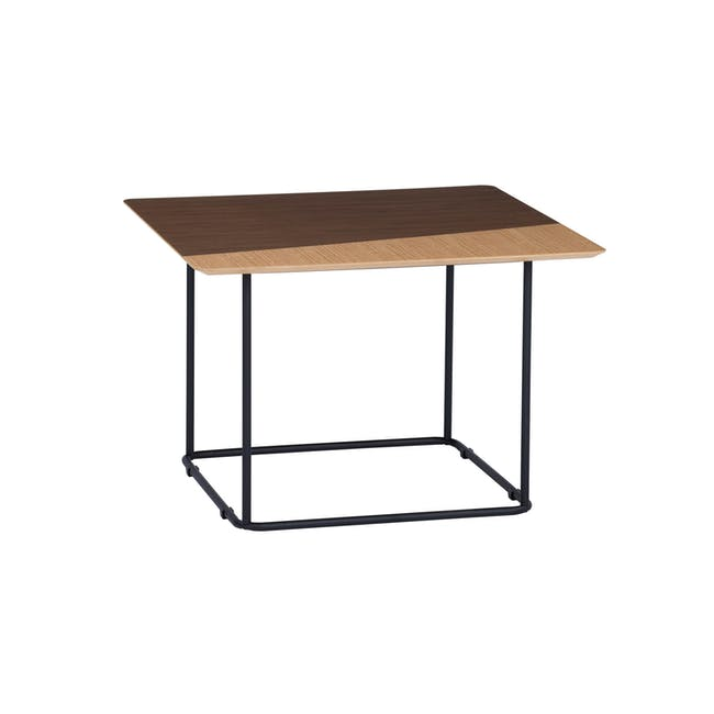Destry Coffee table - 0