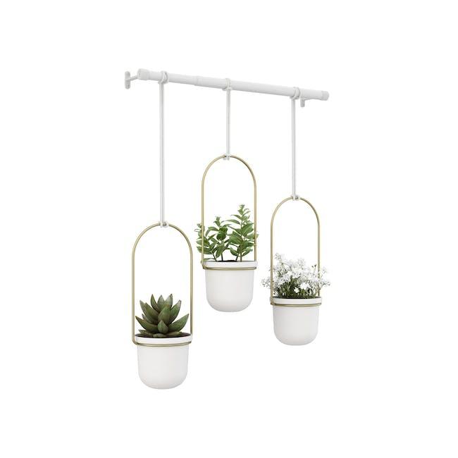 Triflora Hanging Planter - White, Brass (Set of 3) - 0