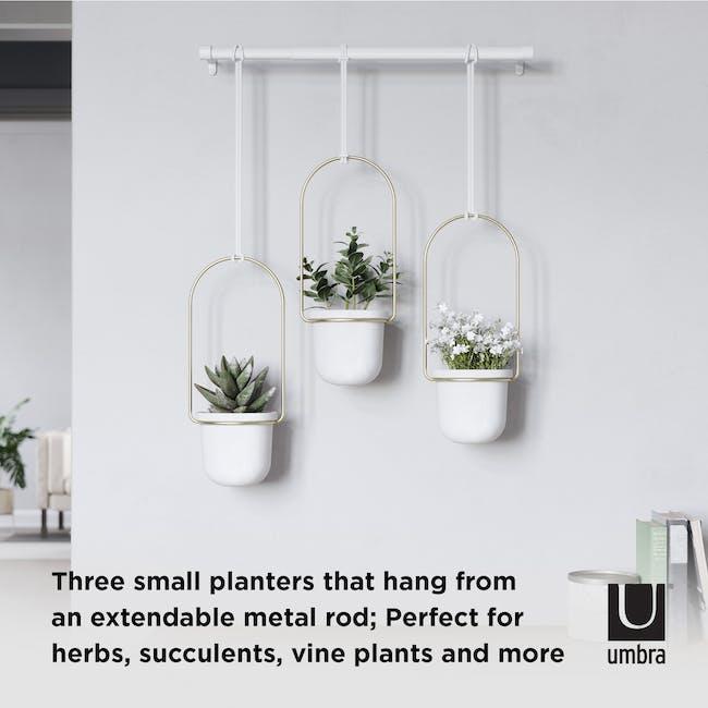 Triflora Hanging Planter - White, Brass (Set of 3) - 7