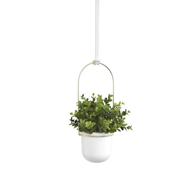 Triflora Hanging Planter - White, Brass (Set of 3) - 4