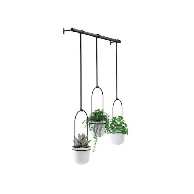 Triflora Hanging Planter - White, Black (Set of 3) - 3