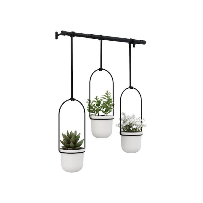 Triflora Hanging Planter - White, Black (Set of 3) - 0