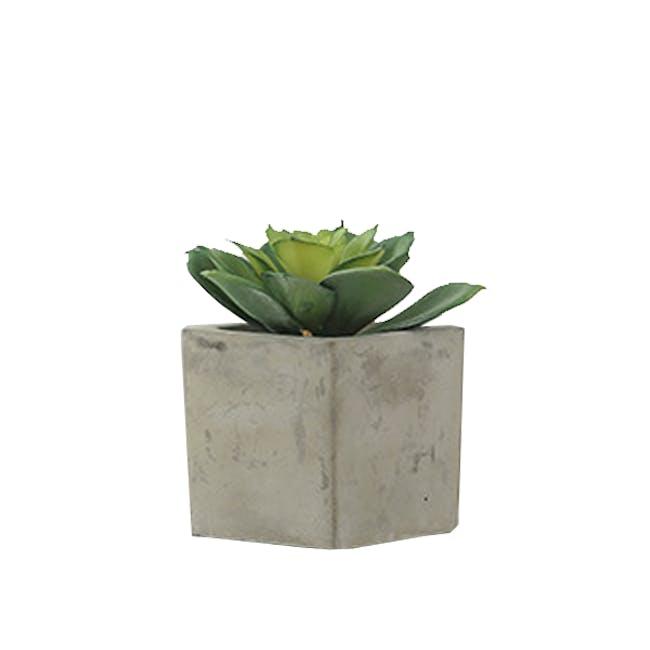 Faux Echiveria in Concrete Planter - Green - 0