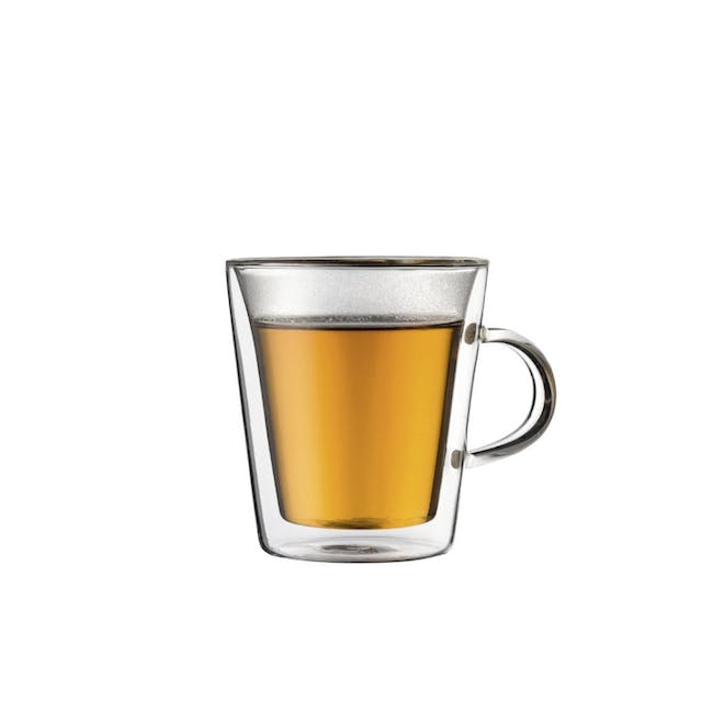 CANTEEN Double Wall Glass with handle 0.2L (Set of 2) - 0