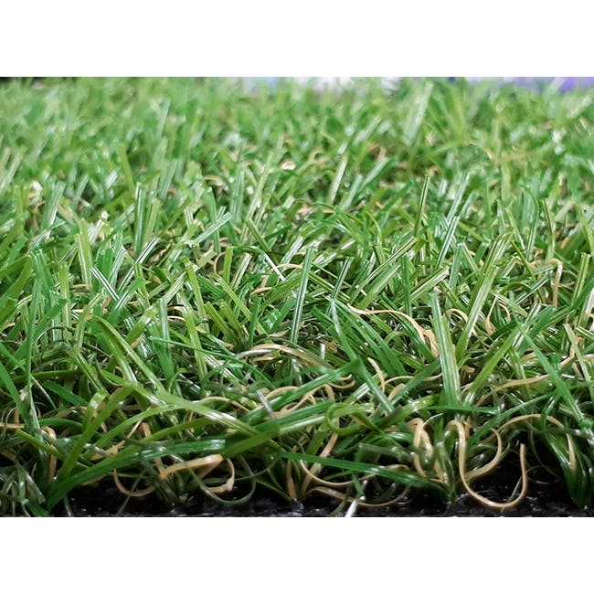 Lawn Grass Carpet - 2