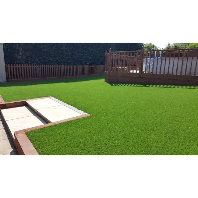 Lawn Grass Carpet - 3
