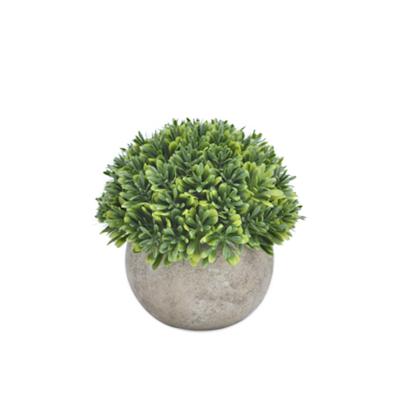Faux Boxwood Tree 13.5 cm - Image 2