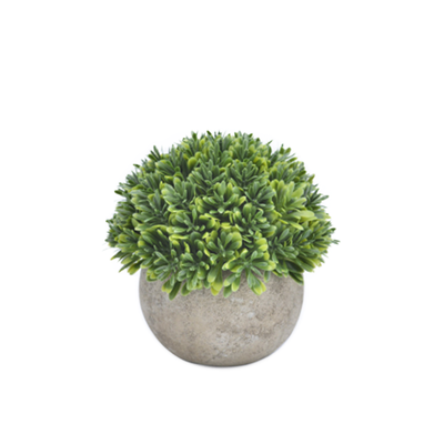 Faux Boxwood Tree 13.5 cm - Image 2