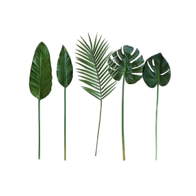 Faux Tropical Leaf - Assorted (Set of 5) - 0