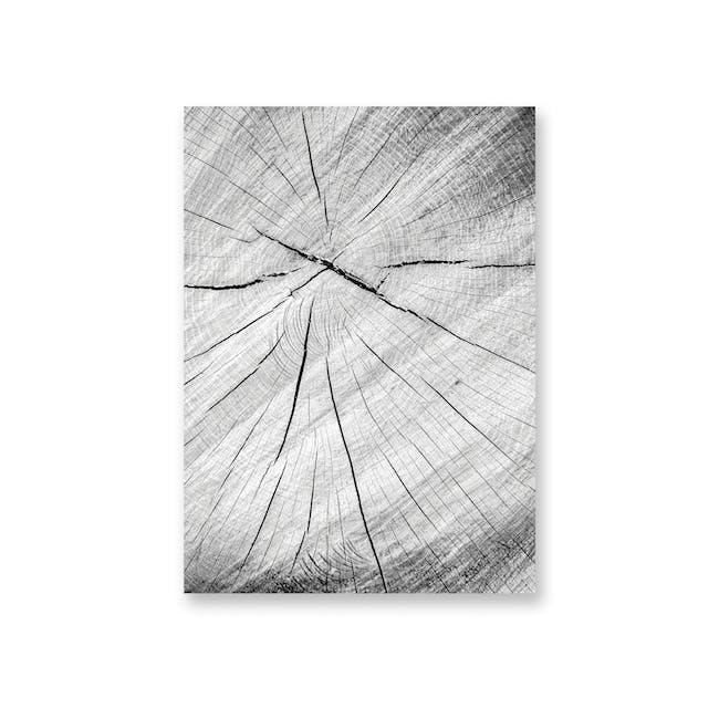 Borderless Monochrome Art Print on Paper (2 Sizes) - Wood Grains - 0